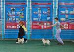 выставка собак Курск-2012